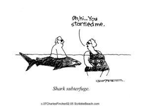 02.05.07.shark.subterfuge