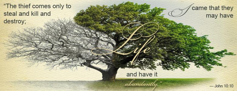 John-10-10-tree